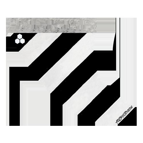 Zebra Fin