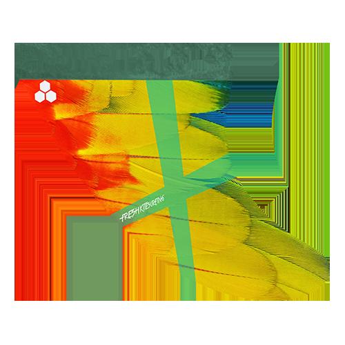 Parrot Fin